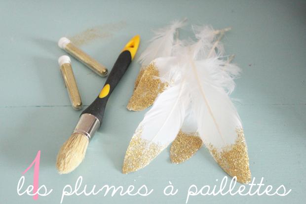 plumes a paillettes